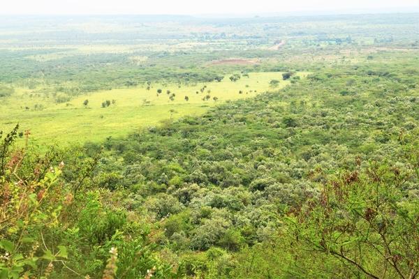 Hiking near Nairobi