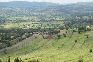 road trip in Kenya
